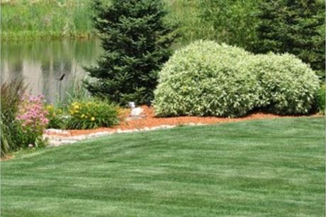Arborist's Care and Landscaping LLC