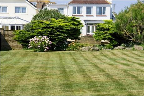 Quality Green Lawn Care And Snow Removal